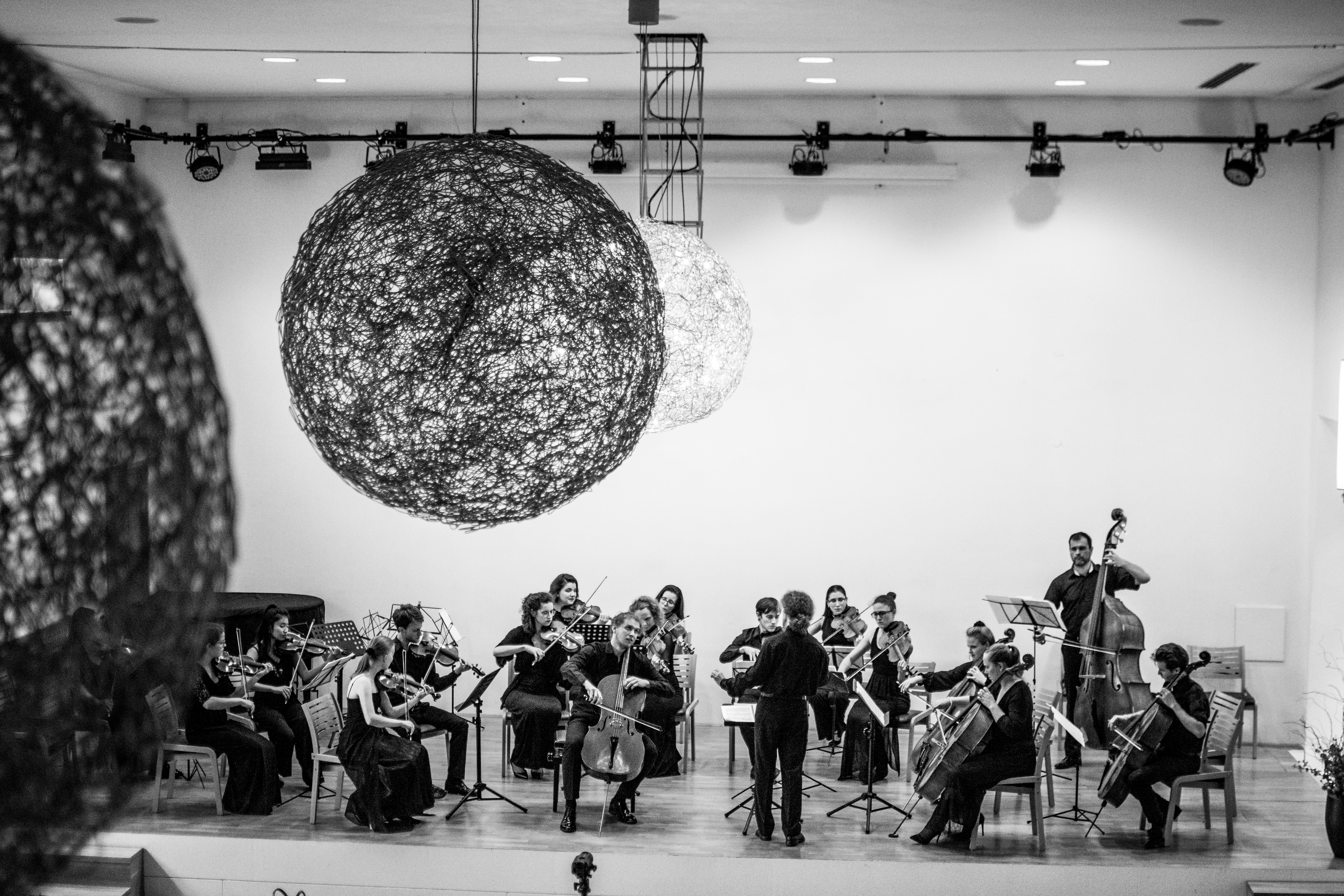 Koncert Peneča klasika, Orkester Amadeo
